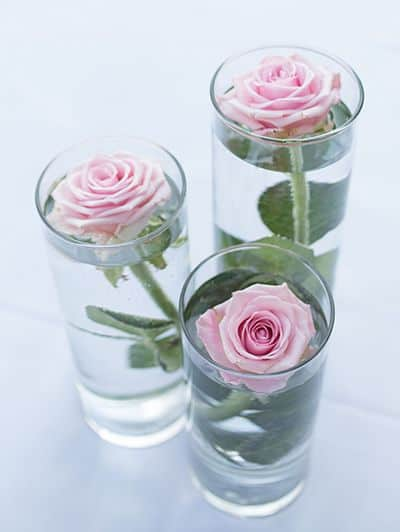 cylinder vases with flowers