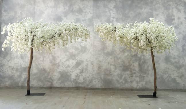 Blossom tree arch